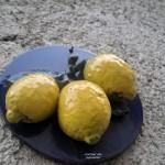 Lago di Garda: Limone – locul unde se trăieşte mult şi bine