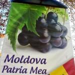 O plimbare prin Cahul (Republica Moldova)