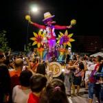 Carnavalul Mamaia 2014 cu bune şi cu rele