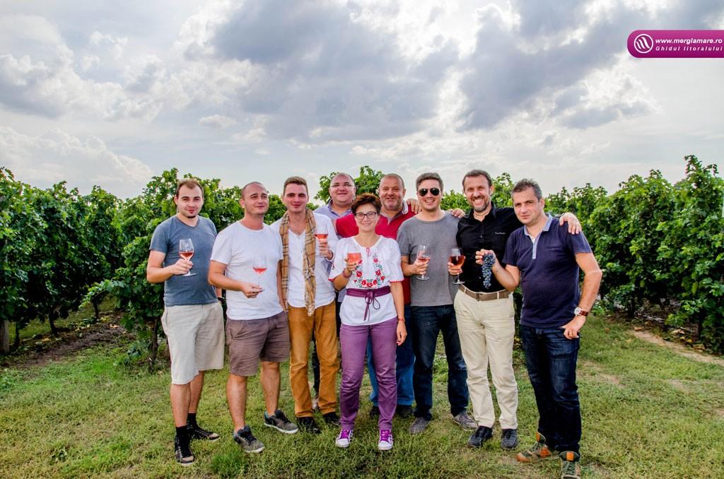 10-Vinul-Alira-merglamare