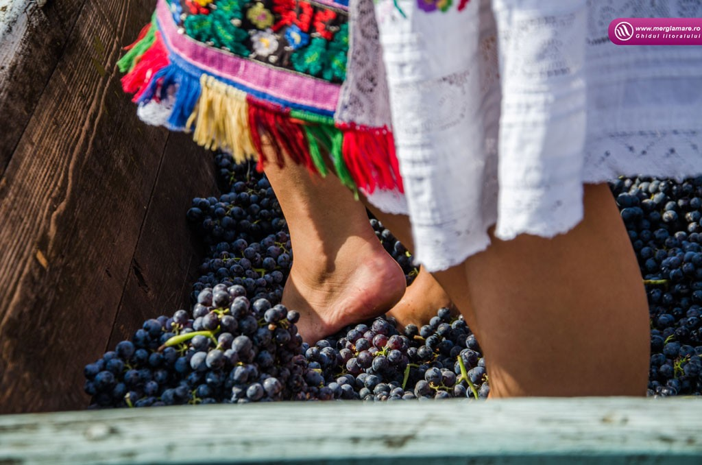 12-Vinul-Alira-merglamare
