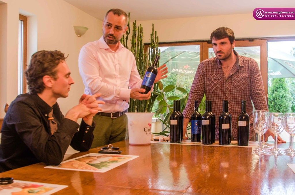 23-Vinul-Alira-merglamare