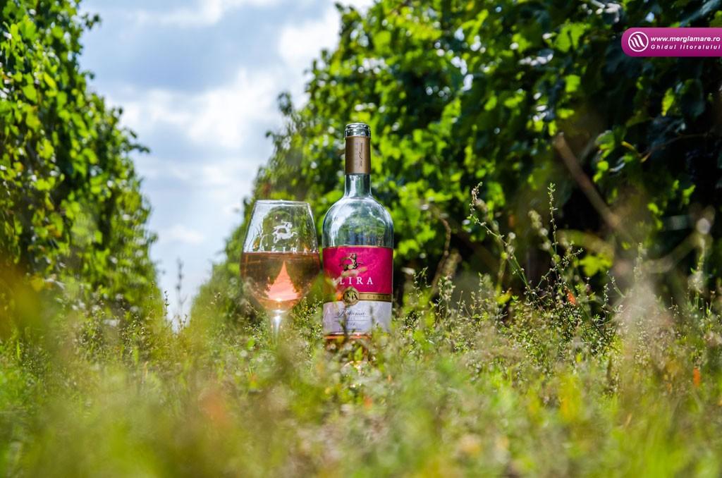 7-Vinul-Alira-merglamare