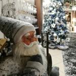 Vizită în satul lui Moș Crăciun