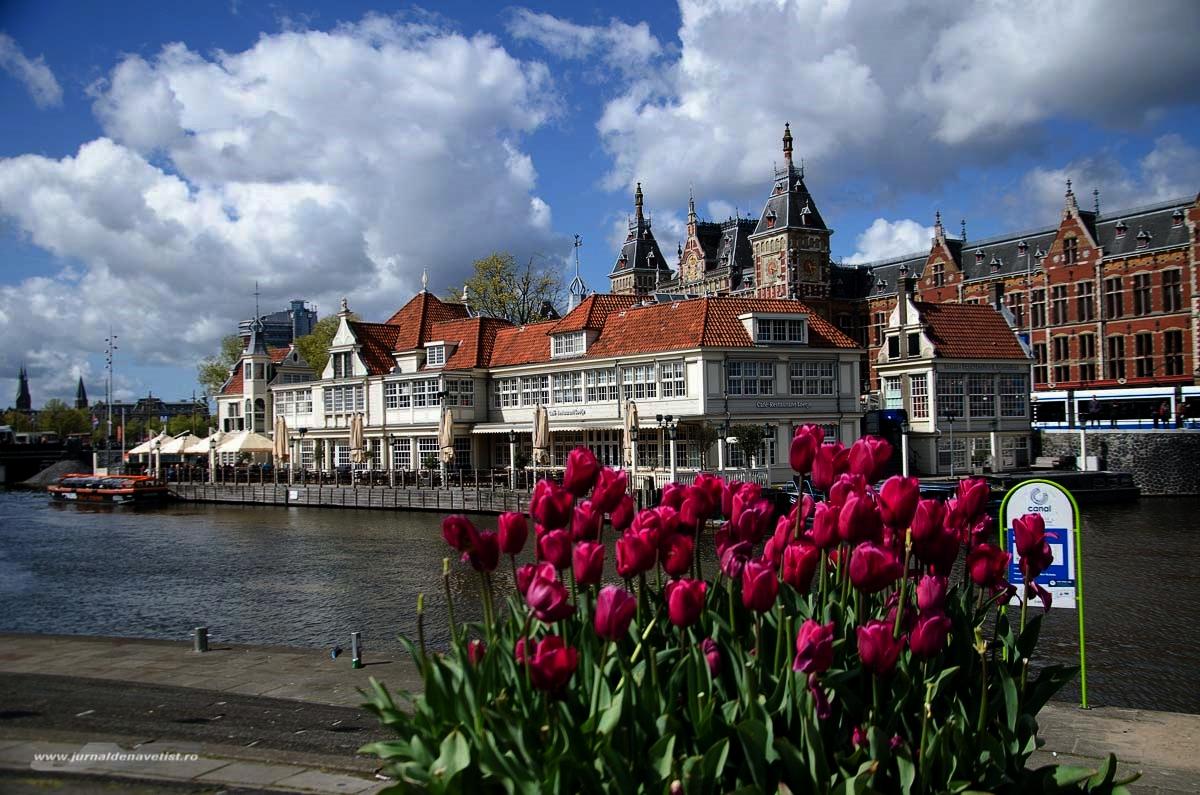 Image result for amsterdam inflorirea lalelelor