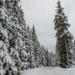 Prima zăpadă la munte