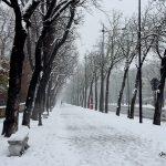 Iarna în Parma