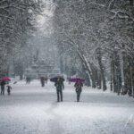 Parma sub farmecul zăpezii